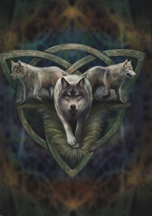 Anne Stokes WOLF TRIO Greeting Card